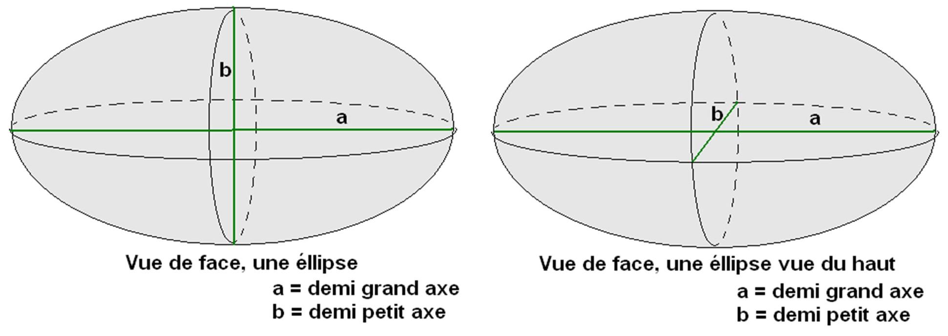 forme ellipsoidale
